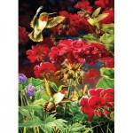 Puzzle  Cobble-Hill-51787 Geraniums et Colibri