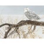 Puzzle  Cobble-Hill-52084 Pièces XXL - Fallen Willow Snowy Owl