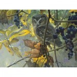 Puzzle  Cobble-Hill-52086 Pièces XXL - Robert Bateman - Saw-whet Owl and Wild Grapes