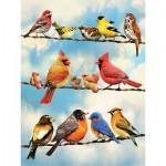 Puzzle  Cobble-Hill-52093 Pièces XXL - Birds on a Wire