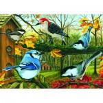 Puzzle  Cobble-Hill-57125 Le Geai Bleu et ses Amis
