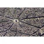 Puzzle  Piatnik-5376 Collection Skyview : Paris, vue du ciel