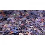 Puzzle  PuzzelMan-656 Couple Royal Willem-Alexander et Maxima des Pays-Bas
