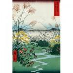 Puzzle en Bois - Hiroshige