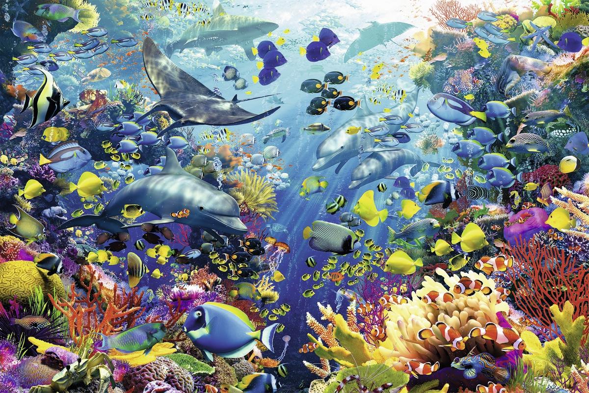 paradis-des-fonds-marins-puzzle-3000-pie