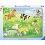 Ravensburger-06119 Puzzle Cadre - Animaux dans le Pré