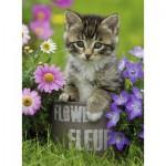 Puzzle  Ravensburger-10847 Chaton dans les Fleurs