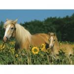 Puzzle  Ravensburger-12628 Mon cheval