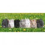 Puzzle  Ravensburger-12696 Pièces XXL - Parade des lapins