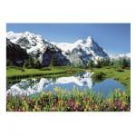Puzzle  Ravensburger-13601 Oberland Bernois, Suisse