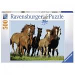 Puzzle  Ravensburger-14717 Horde de Chevaux