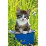 Ravensburger-94874-09430-03 Mini Puzzle - Chaton dans un Pot Bleu