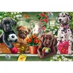 Puzzle  Schmidt-Spiele-56198 Chiots