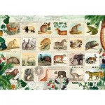 Puzzle  Schmidt-Spiele-58285 Timbres des Animaux