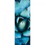 Puzzle  Schmidt-Spiele-59329 Alan Shapiro, Echeveria Bleu