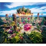 Puzzle  Schmidt-Spiele-59372 Carl Warner,  Île de la mer du Sud, Paysages Culinaires