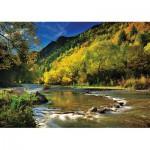 Puzzle  Trefl-10317 Nouvelle-Zélande : Arrow River