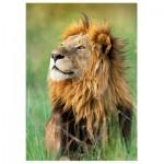 Puzzle  Trefl-10517 Lion, Kénya