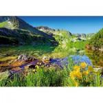 Puzzle  Trefl-26089 Pologne et Slovaquie : Lac Wielki Staw  dans Les Tatras