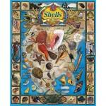 Puzzle  White-Mountain-164 Coquillages et crustacés
