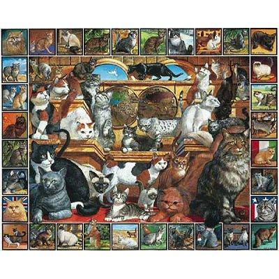puzzle p le m le de chats white mountain 135 1000 pi ces puzzles chats planet 39 puzzles. Black Bedroom Furniture Sets. Home Design Ideas