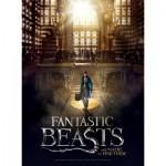 Wrebbit-3D-5005 Poster Puzzle - Fantastic Beasts - Macusa