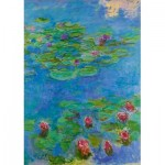 Puzzle  Art-by-Bluebird-Puzzle-60062 Claude Monet - Water Lilies, 1917