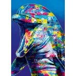 Puzzle   Dolphin