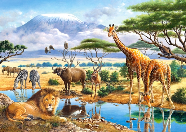 Favorit 2 Puzzles - Animaux de la Savane et de la Jungle Castorland-21031  JI06