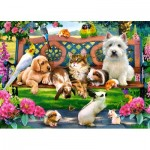 Puzzle  Castorland-018444 Pets in the Park
