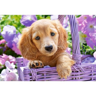 Puzzle Castorland-103799 Puppy in Basket