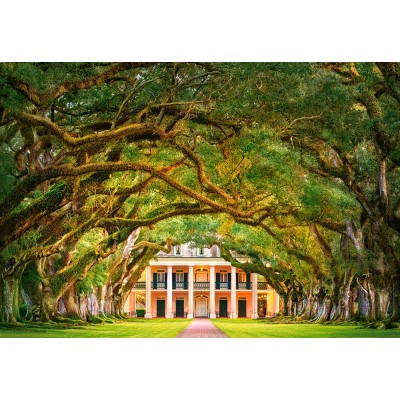Puzzle Castorland-104383 Oak Alley Plantation