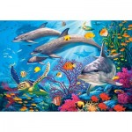 Puzzle  Castorland-151486 Secrets of The Reef
