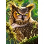 Puzzle  Castorland-30231 Watching & Waiting - Hibou