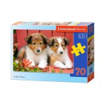 Puzzle  Castorland-B-007141 Chiots Colley