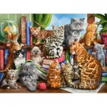 Puzzle   House of Cats