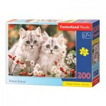 Puzzle   Persian Kittens