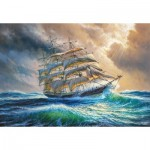Puzzle   Sailing against all Odds