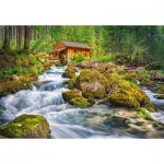 Puzzle   Watermill