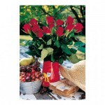 Puzzle  Dino-51402 Pièces XXL - Roses