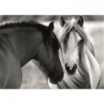 Puzzle   Black and White Horses