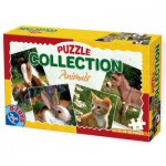 Dtoys-63069-AF-01 4 Puzzles animaux