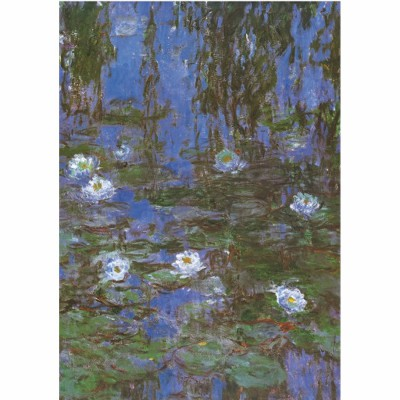 Puzzle DToys-67548-CM06-(69641) Monet Claude - Nymphéas