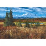 Puzzle  Educa-16008 Etats-Unis : Parc National De Denali