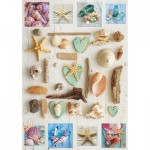 Puzzle  Educa-17658 Collage de Coquillages