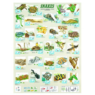 Puzzle Eurographics-6000-2610 Serpents