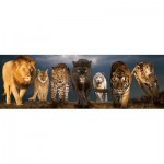 Puzzle  Eurographics-6010-0297 Big Cats