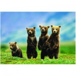 Puzzle  Eurographics-8300-0531 Oursons debout
