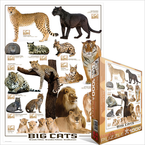 puzzle grands f lins du monde eurographics 6000 0125 1000 pi ces puzzles animaux sauvages. Black Bedroom Furniture Sets. Home Design Ideas