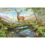 Puzzle  Jumbo-11143 Adrian Chesterman - Wildlife in Spring